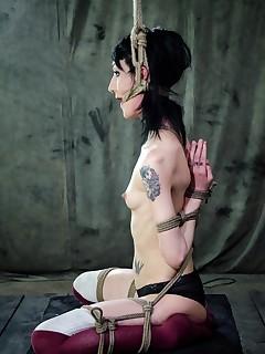 Hardtied | Extreme Rope Bondage, Orgasms, and Hardcore Sex | Beat The Bunny