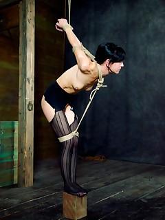 Hardtied | Extreme Rope Bondage, Orgasms, and Hardcore Sex | Ravaged